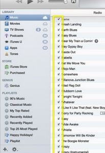 Why Can't I Find iTunes CD Burner - Tick Songs Before Burning