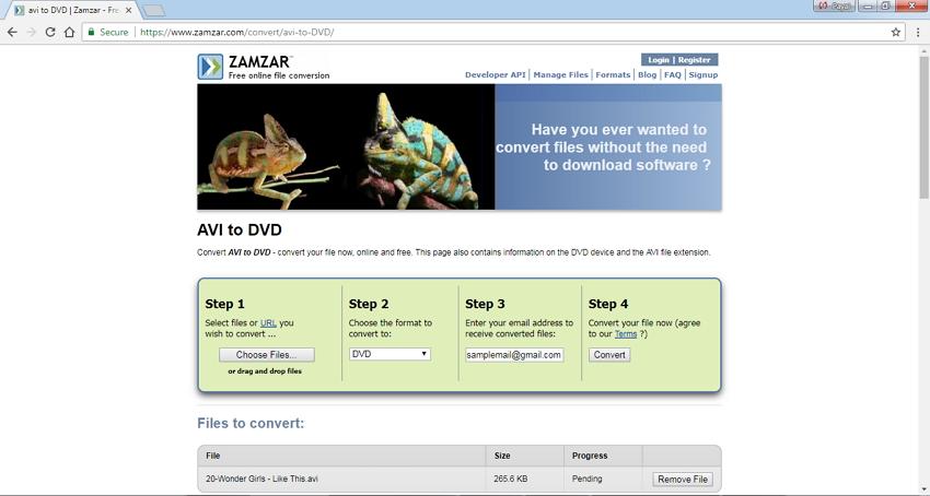 AVI to DVD Converter Online